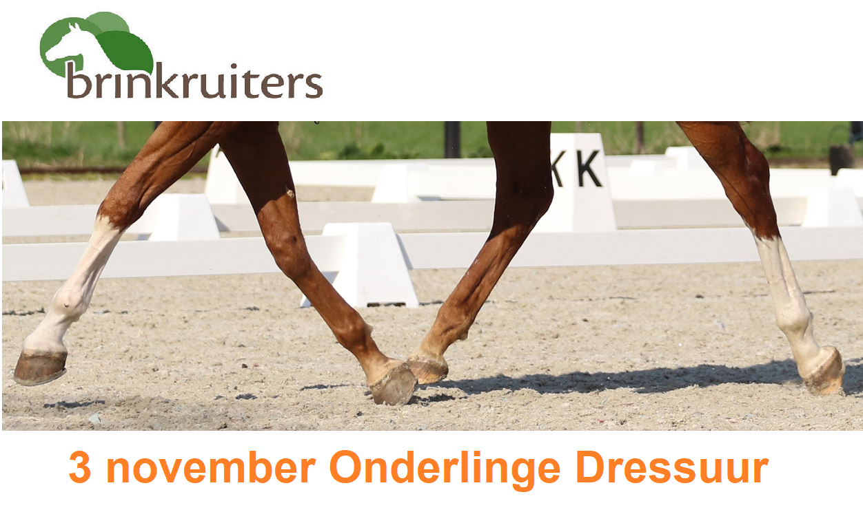 3 november onderlinge dressuur